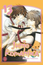 Junjo Romantica 13 (2011)