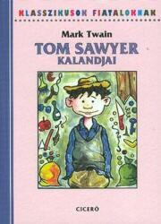 Tom Sawyer kalandjai (2008)