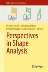 Perspectives in Shape Analysis (ISBN: 9783319247243)