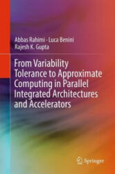 From Variability Tolerance to Approximate Computing in Parallel Integrated Architectures and Accelerators (ISBN: 9783319537672)