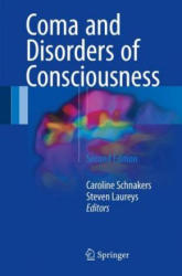 Coma and Disorders of Consciousness (ISBN: 9783319559636)