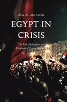Egypt in Crisis (ISBN: 9783319560199)