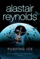 Pushing Ice (2008)