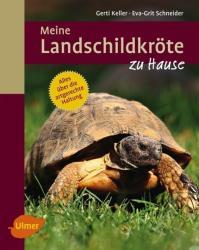 Meine Landschildkrte zu Hause (ISBN: 9783800180981)