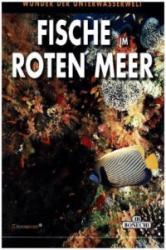 Fische im Roten Meer (ISBN: 9783944027333)