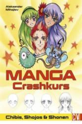 Manga Crashkurs (ISBN: 9783862303991)