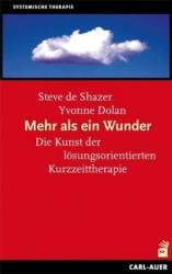 Mehr als ein Wunder (ISBN: 9783849702601)