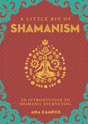 Little Bit of Shamanism, A (ISBN: 9781454933755)