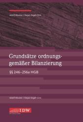 Grundstze ordnungsgemer Bilanzierung (ISBN: 9783802124365)