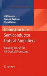 Nanostructure Semiconductor Optical Amplifiers - Building Blocks for All-optical Processing (2010)