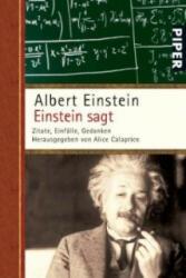 Einstein sagt (2007)