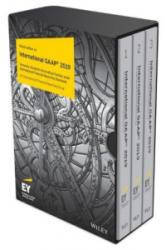 International GAAP 2019 (ISBN: 9781119557760)