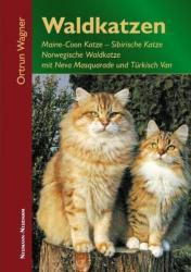 Waldkatzen (2009)