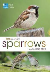 RSPB Spotlight Sparrows (ISBN: 9781472955937)