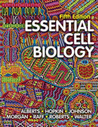 Essential Cell Biology - Bruce Alberts, Karen Hopkin, Alexander D Johnson, David Morgan, Martin Raff, Keith Roberts, Peter Walter (ISBN: 9780393680379)