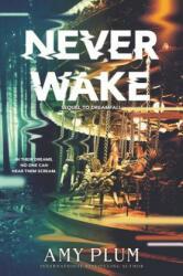 Neverwake (ISBN: 9780062429919)
