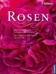 Rosen (2010)