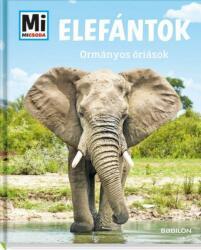 Elefántok - Ormányos óriások (2019)