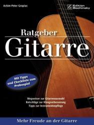Ratgeber Gitarre (2010)
