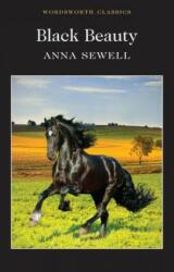 Black Beauty (ISBN: 9781840227611)
