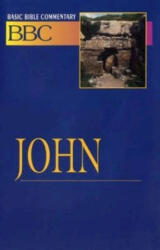 Basic Bible Commentary John - Abingdon Press, Norman P. Madsen, N. P. Madsen (ISBN: 9780687026395)