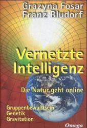 Vernetzte Intelligenz (2001)