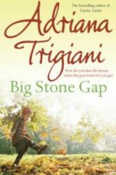 Big Stone Gap - Adriana Trigiani (ISBN: 9780743440127)