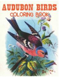 Audubon Birds Coloring Book: beautiful birds coloring book, Paperback (ISBN: 9798602281149)
