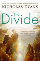 Divide (ISBN: 9780751539349)