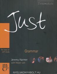 Just Grammar Intermediate (2008)