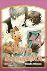 Junjo Romantica. Bd. 14 - Shungiku Nakamura, Alexandra Klepper (2012)