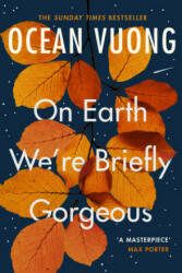 On Earth We're Briefly Gorgeous - Ocean Vuong (ISBN: 9781529110685)