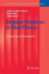 Singular Problems in Shell Theory (2010)