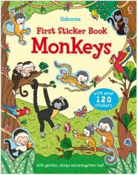 Monkeys (2012)
