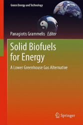 Solid Biofuels for Energy (2010)