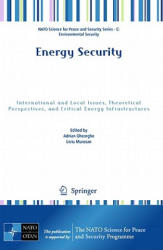 Energy Security - International and Local Issues, Theoretical Perspectives, and Critical Energy Infrastructures (2011)