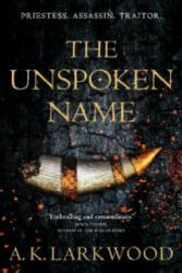 UNSPOKEN NAME (ISBN: 9781250762542)
