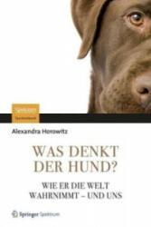 Was denkt der Hund? (2012)