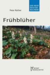 Frhblher (2008)