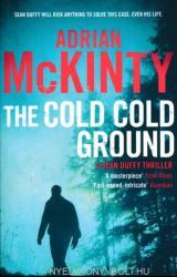 Cold Cold Ground - Adrian McKinty (2012)