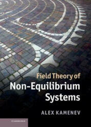 Field Theory of Non-Equilibrium Systems - Alex Kamenev (2011)