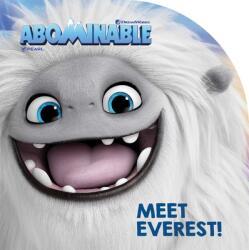 Meet Everest! (ISBN: 9781534448742)