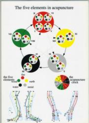 Five Elements in Acupuncture - A4 (1997)