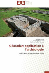 G oradar - Ahmed Faize, Abdellah Driouach, Martinez Rafael Gomez (ISBN: 9783838184128)