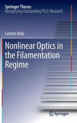 Nonlinear Optics in the Filamentation Regime (2012)