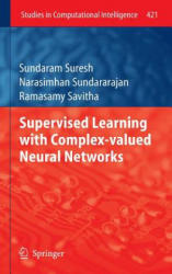 Supervised Learning with Complex-valued Neural Networks (2012)