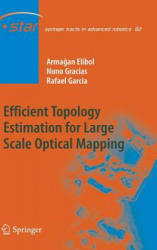 Efficient Topology Estimation for Large Scale Optical Mapping (2012)