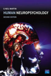 Human Neuropsychology (2001)