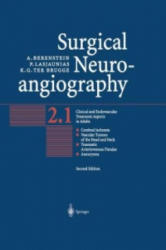 Surgical Neuroangiography: Vol. 2: Clinical and Endovascular Treatment Aspects in Adults - Vol. 2: Clinical and Endovascular Treatment Aspects in Adult (2012)