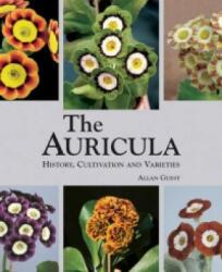 Auricula (2009)